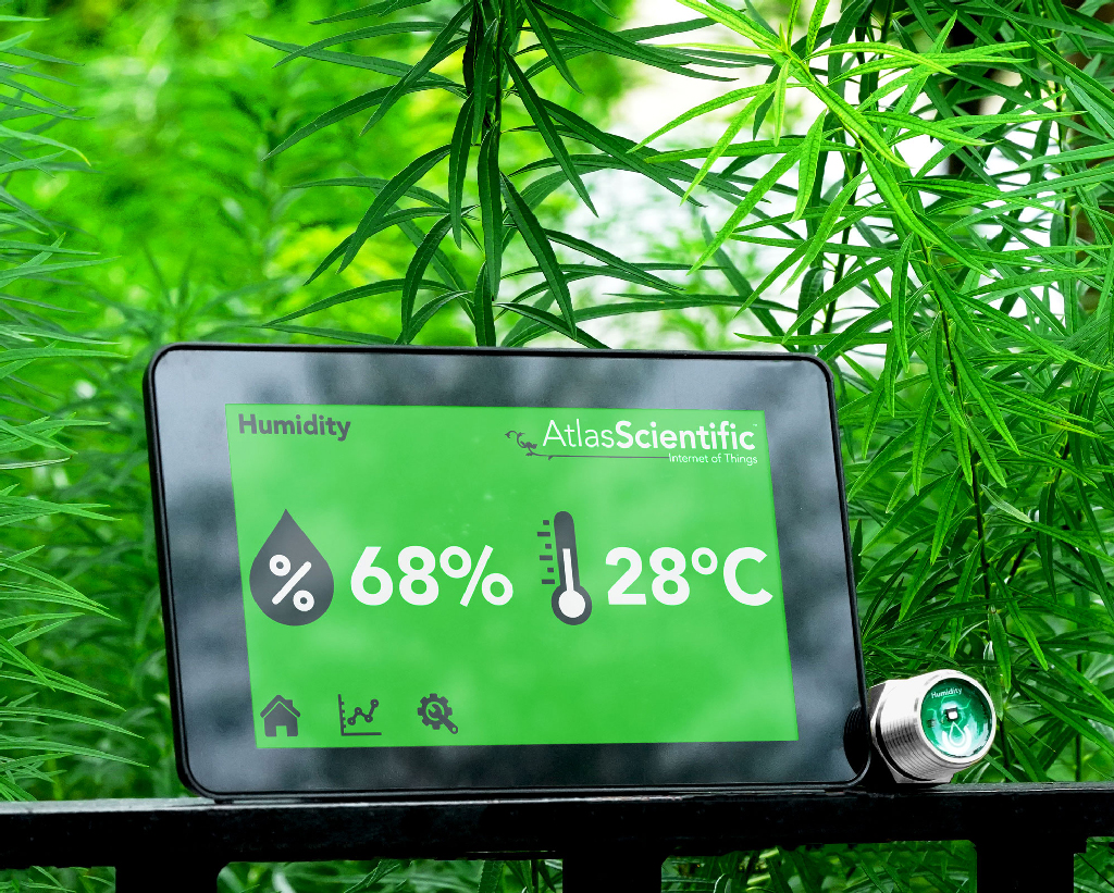 The Importance of Controlled Humidity Levels for Growing Cannabis