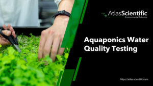 aquaponics-water-testing