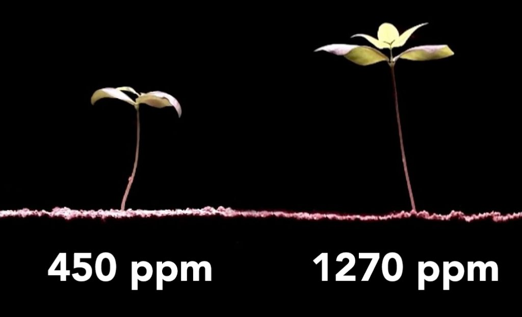 CO2 Meter for Grow Room Enrichment and Safety
