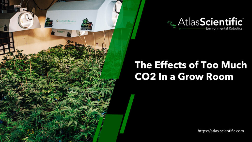 effects-of-too-much-co2-in-grow-room