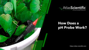 how-does-a-ph-probe-work