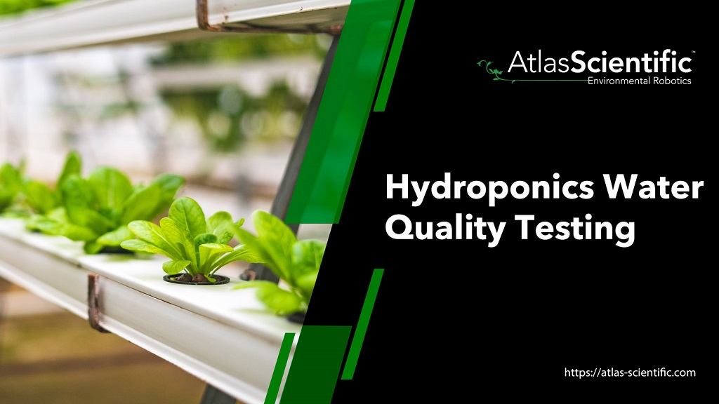 hydroponic-water-testing