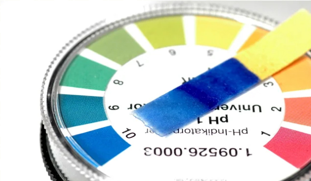 pH Meter Vs pH Paper: Which one do you need?