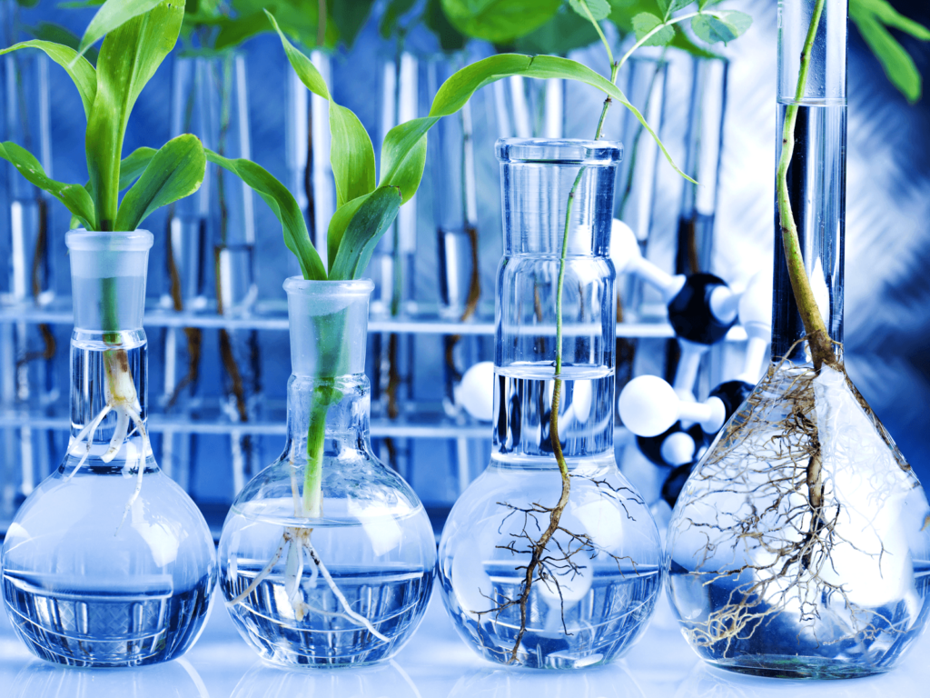 Why is pH Important for Hydroponics?