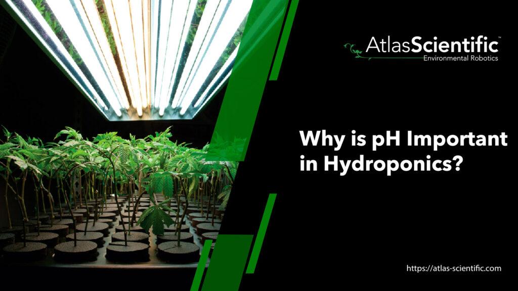 ph-for-hydroponics