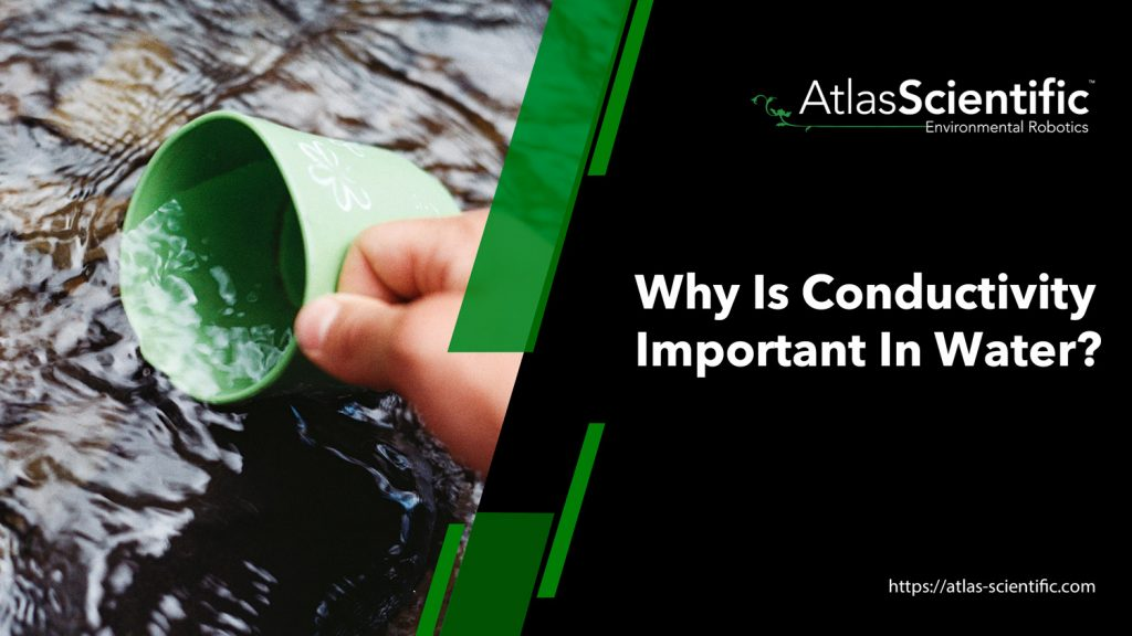 why-is-conductivity-important-in-water