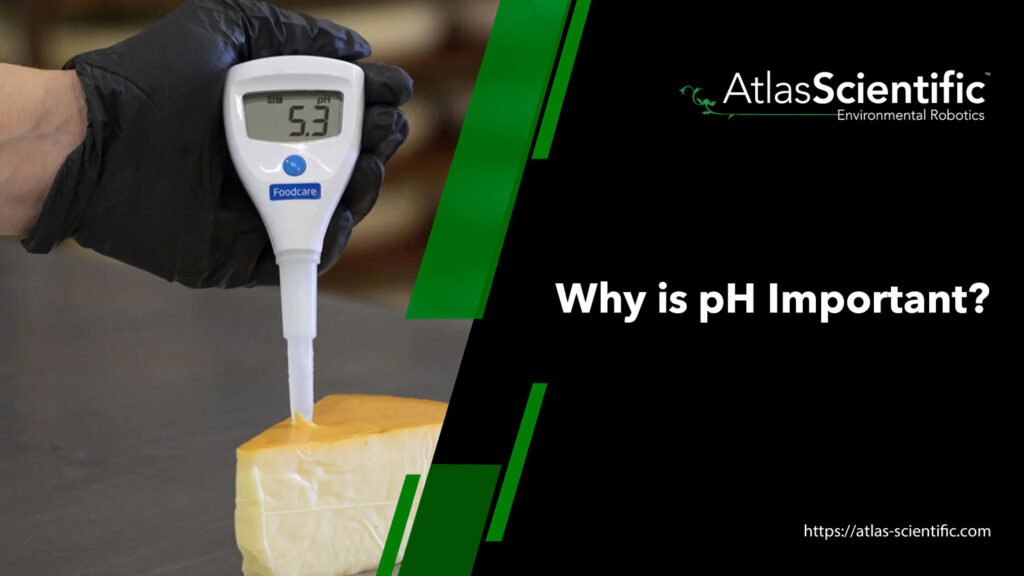 Why Is pH Important?